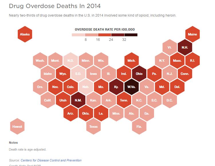 OpioidGraph